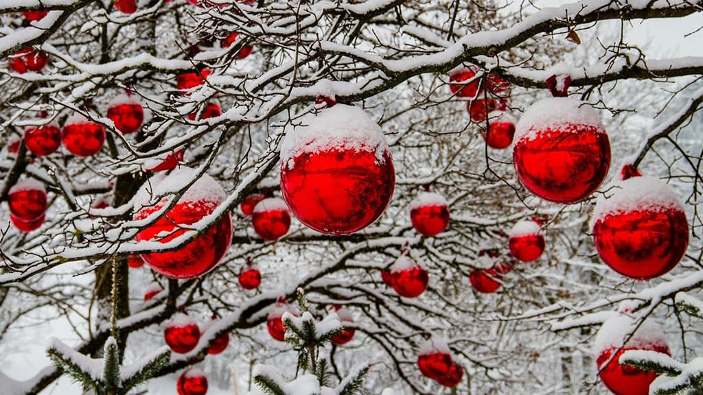 Arbre sous la neige décoré avec des boules de Noël
