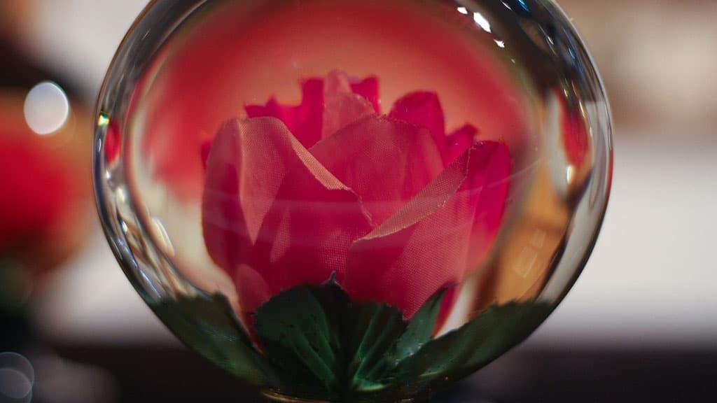 boule de noël fleur