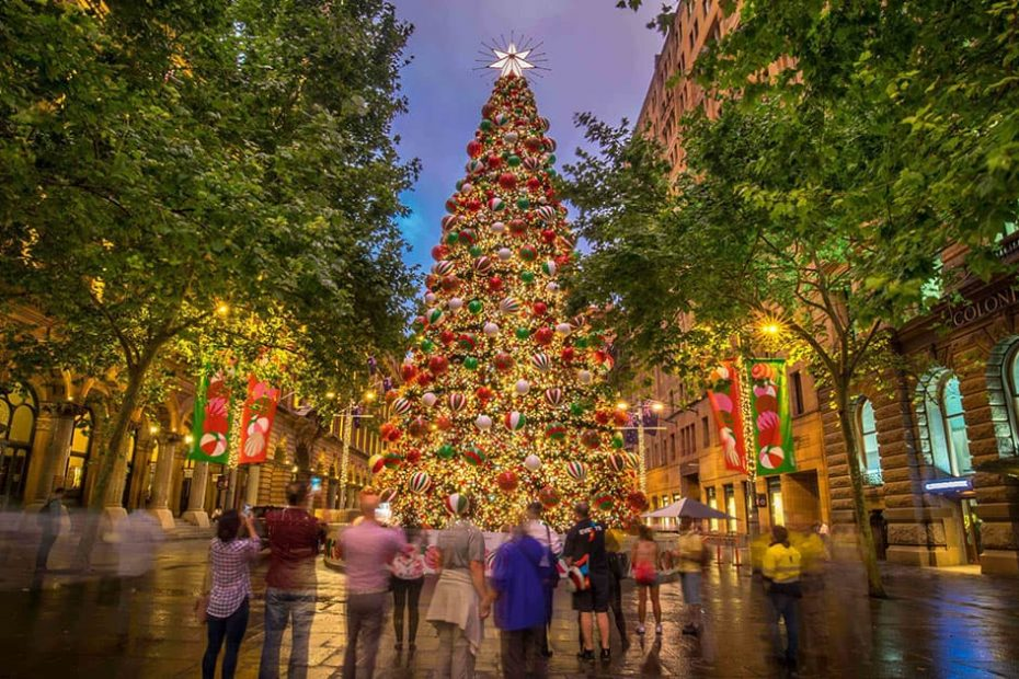 sapin de Noël à Sydney